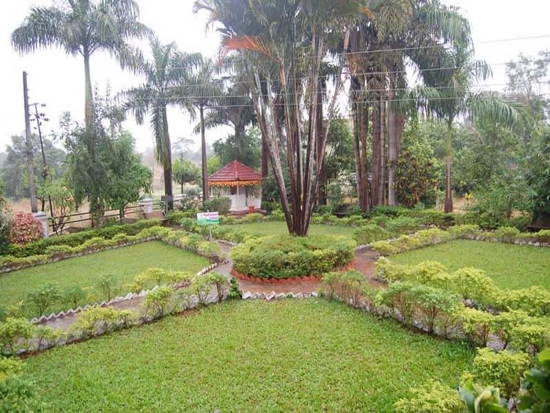 Common Garden